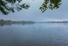 l'Estany de Banyoles (zaskalo) Tags: lago bañolas agua lestany de banyoles