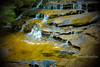 Waterfall (1DesertRose) Tags: bluemountains flowing slow plants rocky sunsetting fujifilmxt20 photography nature natural water fresh spring australia sydney nsw leura waterfalls