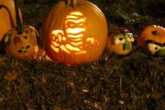 Happy Halloween 🍊👻😱 (cynthiarobb) Tags: