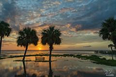 Beauty needed (Michael Seeley) Tags: canon fl florida lake lakewashington landscape melbourne michaelseeley mikeseeley shoreline spacecoast sunset