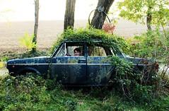 Green Car (Flavio Calcagnini) Tags: auto car vecchia old italian fiat 600 seicento blu verde landscape paesaggio abbandonata mulino di fiorano travo piacenza emilia campagna bambino boy ragazzino flavio calcagnini photography abandoned