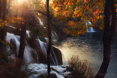 streams of gold (cherryspicks (on/off)) Tags: waterfall goldenhour sun water longexposure lake plitvice croatia landscape forest woods autumn fall