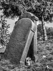 Graveyard (Ruinenvogel) Tags: graveyard cemetry friedhof rip creepy halloween skull bones hdr bw sw