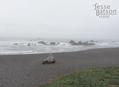 DeMartin Beach Picnic Area (jessebatsonpics) Tags: jessebatson jessebatsoncom california demartinbeach pacificocean highway101
