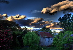 "MY ""MOODY BLUES"" GARDEN (Lani Elliott) Tags: lanielliott garden homegarden shed timber shearingshed applepickershut moody sky skies cloud clouds blue bluesky dramatic dramaticsky light c1889 beautiful superb awesome gorgeous excellent"