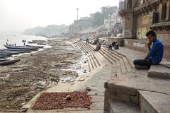 Around Assi ghat (Michael Olea) Tags: 2015 travel asia india varanasi ghat