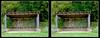 Longwood Gardens Walk 5 - Parallel 3D (DarkOnus) Tags: pennsylvania bucks county panasonic lumix dmcfz35 3d stereogram stereography stereo darkonus longwood gardens scenic scenery trail path forest edge pavilion learning parallel