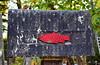 Poisson dans son cadre naturel (jpdu12) Tags: dogme95 flickrfriday jpdu12 jeanpierrebérubé poisson poste boîte box fish rouge noir