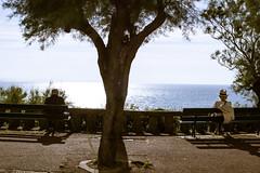 Faire banc à part (dominiquita52) Tags: streetphotography biarritz bancs benches loneliness contemplation meditation tree arbre aquitaine ocean