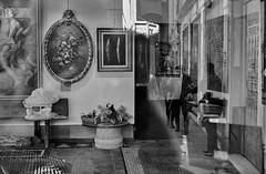 2017♦269 (ruggeroranzani_RR) Tags: analog blackandwhite 35mm film rolleirpx400 nikonf2photomic nikonnikkoroauto12f35mm people reflection window beggar venice adoxaph09