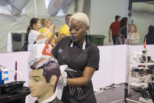 WSC2017 Skill29 SPP7 5698