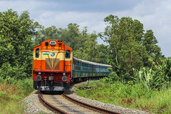 ALCO through lush green ( In Explore ) (Jayfotographia) Tags: indianrailways train edamonkollamjnpassenger wdg3a ernakulamwdg3a nature greenery trainspotting trainspo railpicturesnet alco dlw travel railphotography jayfotographia jayasankarmadhavadas canon canoneos1200d kuri kottarakkara kollam kerala india