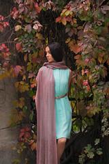 DSCF2415 (Alex Dram) Tags: autumn colours fairy sprite xm1