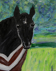 The Black Foal (BKHagar *Kim*) Tags: bkhagar art artwork painting paint acrylic horse equine black foal colt