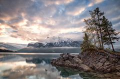 Leaning towards the light (Explore Sept 25/2017) (Canon Queen Rocks (1,812,000 + views)) Tags: momentsbycelinecom mountains mountain mountainpeak rocks rockies clouds colours canada banff banffnationalpark nature nationalpark trees sky scenery scenic snow snowcapped water white reflections dawn sunrise morning landscape lake landscapes lakes lakeminnewanka island calm pinks bluesky rock alberta