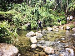 Kalalau Trail, Na Pali Coast (throgers) Tags: kauai hawaii kalalautrail napalicoast hiking hike