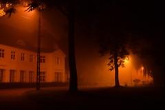 summer moods (JoannaRB2009) Tags: summer mood night fog foggy mist misty lights town palace park silhouettes orange lowersilesia dolnyśląsk polska poland building architecture dolinabaryczy longexposure tree trees