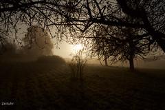 (Zeituhr) Tags: zeituhr herbst fall autumn nebel