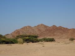 Dana Natural Reserve - Jordan
