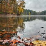 Wet Rainy Fall Day thumbnail