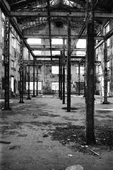 unbreakable (flyerkat_L.E.) Tags: lostplaces leipzig city film analog superpan200 nikon fm2 monochrome bw black white 35mm
