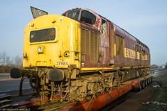 37684 28.12.2009 (Wolfie2man) Tags: britishrail ews tractor lowloader allelys scrap withdrawn demic class37 37684