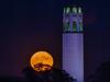 2017 Harvest Moon, rising over Coit Tower (jrodmanjr) Tags: sf sanfrancisco harvest moon full california coit tower harvestmoon sfist