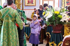 Преподобного Сергия (62)