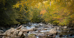 Rest for Old Stones (NathanJNixon) Tags: wood autumn newjersey landscape calm serene nature water quiet fall stones rocks beautiful trees blue yellow welcoming grey river peaceful golden usa orange green america debris red leaves califon unitedstates us ken lockwood gorge