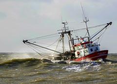 It's windy.... (Jaedde & Sis) Tags: christina hvidesande vessel fishing wind weather waves challengeyouwinner friendlychallenges 15challengeswinner fotocompetition fotocompetitionbronze fotobronze challengegamewinner