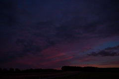 Purple Sky (betadecay2000) Tags: sunset sun abendrot evening bluehour rood red rot roughe pink himmel sky heaven sonnenuntergang abendstimmung german germany deutsch deutschland niemcy münsterland darfeld rosendahl rosendahldarfeld