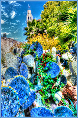 The Alamo.... (Baja Juan) Tags: alamo san antonio texas hss happy slider sunday cactus palms vines hdr formatting hyper colored framed blue skies canon baja