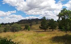 339 box forest road, Uralla NSW
