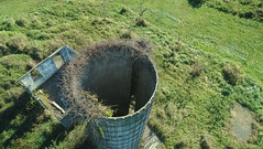 solo silo (sephrocker) Tags: phantom4advanced drone aerial dji viewfromabove farm silo green