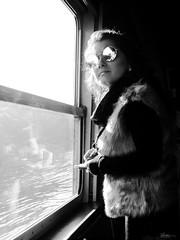 let the sunshine in (René Mollet) Tags: sunshine hair flowers portrait woman windows sunglasses reflection street streetphotography streetart streetphotographiebw blackandwhite bw candite renémollet
