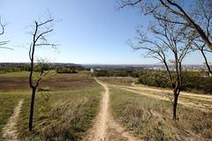 Les coteaux de Pech David, Toulouse (QL27) Tags: toulouse coteaux pechdavid paysage landscape nature