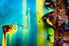 Rusty Rainbow (Sonia Argenio Photography) Tags: fbsoniaargenio flickrbysoniaargenio outdoors soniaargenio soniaargeniophotography soniacollectibles aqua bolts decay metal old orange peeledpaint red rivets rust rusty steel yellow rainbow rustyrainbow