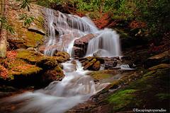 UpperDill+1_9327_TCW (nickp_63) Tags: upper dill falls waterfall cascade long exposure north carolina nc nature nantahala national forest bushwhack platinumheartaward