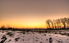 The sun has forsaken us. (Alex-de-Haas) Tags: 1635mm d750 dutch hdr holland nederland nederlands netherlands nikkor nikkor1635mm nikon nikond750 noordholland thenetherlands westfriesland belichting bomen boom cloudless daglicht daylight handheld hemel highdynamicrange landscape landscapephotography landschap landschapsfotografie licht light lighting lucht onbewolkt skies sky sneeuw snow sundown sunset tree trees unclouded winter zonsondergang