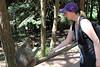 2013-07-21 14-46-59 Montagne des singes.jpg (beckendorf.marc) Tags: fra france alsacechampagneardennelorraine kintzheim alsacechampagneardennelorrain