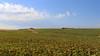 Vacances_5248 (Joanbrebo) Tags: sepúlveda castillayleón españa es antoniomachado camposdecastilla segovia nubes nuvols nuages clouds nature naturaleza natura landscape canoneos80d eosd efs1855mmf3556isstm autofocus
