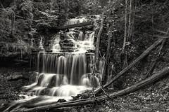 Wagner Falls Munising, Michigan (TAC.Photography) Tags: monochrome blackandwhite bw tomclarkphotographycom tacphotography tomclark d7100 michiganwaterfalls 1000views