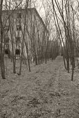_MG_8369 (daniel.p.dezso) Tags: kiskunlacháza kiskunlacházi elhagyatott orosz szoviet laktanya abandoned russian soviet barrack urbex ruin reclaim military base militarybase