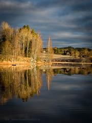 20171103003126 (koppomcolors) Tags: koppomcolors sweden sverige scandinavia värmland varmland österwallskog