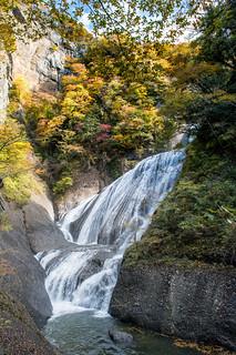 Fukuroda falls colour leaves