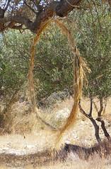 LandART; Kamilari, Pezoules (christianereiser) Tags: landart kunsttherapie arttherapy crète kamilari