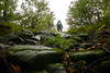 Back to Light (fede.piste) Tags: forest rain italy abetone colors sony alpha 6000 path water bosco landschaft landscape