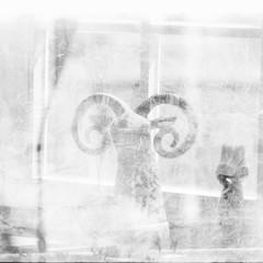Something special? (_LWR_) Tags: 35mm analog film ilfordfp4 mirandasensomatre double exposure