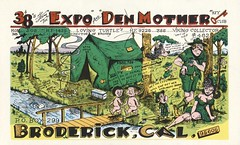 The Viking: Expo & Den Mother - Broderick, California (73sand88s by Cardboard America) Tags: vintage qsl qslcard cbradio cb theviking boyscouts california