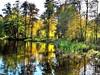Herbstlicher Ebnisee (almresi1) Tags: hdr lake see autumn fall nature landschaft landscape effect wald wood forest spiegelung reflections mirroring welzheim trees bäume colours bunt